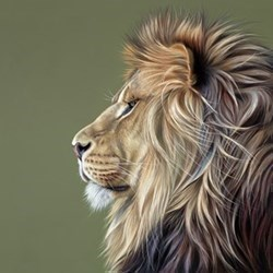 King of the Savannah by Darryn Eggleton - Limited Edition on Canvas sized 18x18 inches. Available from Whitewall Galleries